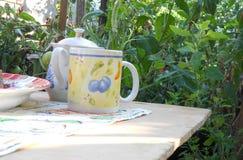 Taza y tetera en la vegetación del fondo Fotografía de archivo libre de regalías