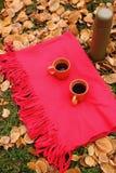 Tazas anaranjadas con té negro y botella de termo en la alfombra roja e hierba verde y hojas caidas Foto de archivo libre de regalías