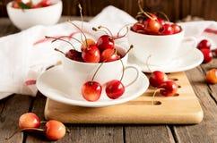 Tazas blancas con la cereza Fotos de archivo