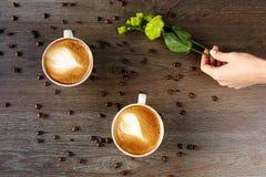 Tazas blancas de capuchino en una tabla de madera con los granos de café Foto de archivo libre de regalías