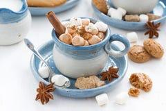 Tazas de cacao con las melcochas y el canela Imagen de archivo libre de regalías