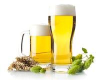 Tazas de cerveza en la tabla con los conos de salto, oídos del trigo aislados en blanco Foto de archivo