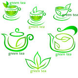 Tazas de hojas frescas del té y del verde Imagenes de archivo