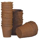 Tazas de la turba para los almácigos Fotografía de archivo