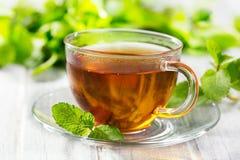 Tazas de té con la menta Fotografía de archivo
