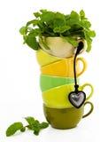 Tazas de té Imagen de archivo libre de regalías