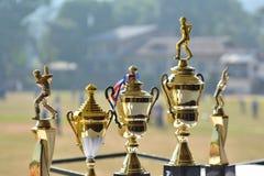 Tazas para el equipo que gana del torneo del grillo imágenes de archivo libres de regalías