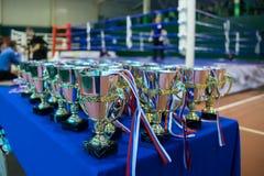 Tazas - premio para los triunfos de los deportes Imagen de archivo libre de regalías