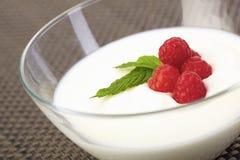 Tazón de fuente de la cuajada del yogur de la frambuesa Imagen de archivo