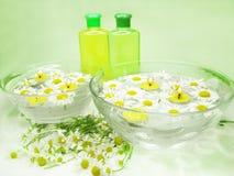 Tazón de fuente del balneario con las flores de la margarita y el gel del champú Imagen de archivo
