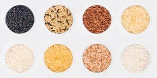 Tazones de fuente de arroz orientales Imágenes de archivo libres de regalías