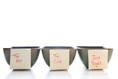 Tazones de fuente de las gachas de avena Imagen de archivo libre de regalías