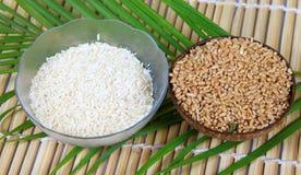 Tazones de fuente del trigo y de arroz Fotos de archivo libres de regalías
