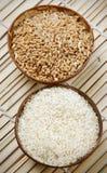 Tazones de fuente del trigo y de arroz Imagenes de archivo
