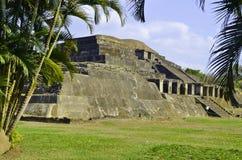 Tazumal arkeologiplats Royaltyfri Fotografi