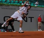 Tazza 2012 della squadra del mondo del cavallo di potenza di tennis Fotografie Stock Libere da Diritti