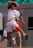 Tazza 2012 della squadra del mondo del cavallo di potenza di tennis Immagini Stock Libere da Diritti