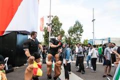 Tazza asiatica 2015 di AFC Fotografie Stock