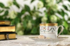 Tazza bianca della bevanda calda con le caramelle nel giardino Fotografia Stock