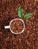 Tazza bianca piena dei chicchi di caffè sul backgroun dei chicchi di caffè Roasted Fotografia Stock Libera da Diritti