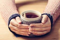 Tazza calda delle mani di riscaldamento del ` s della donna del tè in retro saltatore fotografia stock libera da diritti