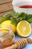 Tazza calda di tè con le erbe Fotografia Stock Libera da Diritti