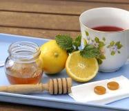 Tazza calda di tè con le erbe Fotografie Stock Libere da Diritti