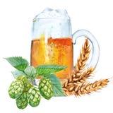 Tazza con birra Isolato su una priorità bassa bianca Illustrazione dell'acquerello royalty illustrazione gratis
