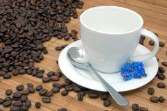 Tazza con i chicchi di caffè Fotografia Stock Libera da Diritti