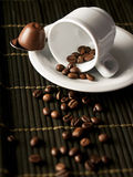 Tazza con i chicchi di caffè Immagini Stock