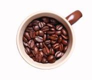 Tazza con i chicchi di caffè arrostiti Immagini Stock