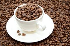 Tazza con i chicchi di caffè su un piattino fotografia stock libera da diritti