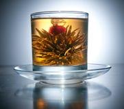 Tazza con il tè di fioritura del fiore Fotografie Stock Libere da Diritti