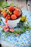 Tazza con le bacche fresche Fotografia Stock