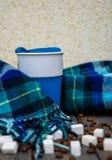 Tazza da caffè e sciarpa calda Immagine Stock Libera da Diritti