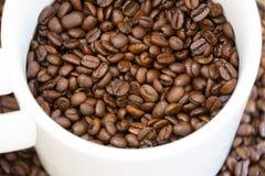 Tazza da caffè in pieno dei chicchi di caffè Fotografie Stock