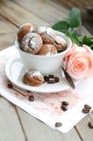 Tazza dei biscotti del cappuccino Immagine Stock