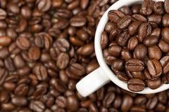 Tazza del caffè espresso in pieno con i chicchi di caffè arrostiti Fotografie Stock Libere da Diritti