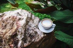 Tazza del cappuccino sulla roccia con le foglie verdi fotografia stock