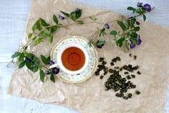 Tazza del oolong del latte del tè verde e dei coni sparsi per fare sopra Fotografia Stock Libera da Diritti