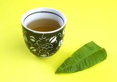 Tazza del tè del Cedron immagini stock libere da diritti