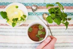 Tazza del tè della menta con Melissa ed il limone a disposizione sui precedenti Fotografia Stock