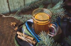 Tazza del tè del limone coperta di sciarpa Albero di Natale nella priorità bassa Concetto di inverno fotografie stock