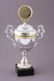Tazza del trofeo Fotografie Stock