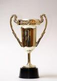 Tazza del trofeo dell'oro isolata Immagine Stock Libera da Diritti