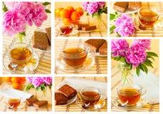 Tazza dell'insieme di tè Immagini Stock Libere da Diritti