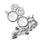 Tazza di birra con il ramo di luppolo illustrazione vettoriale