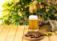 Tazza di birra con la salsiccia Immagine Stock Libera da Diritti