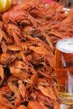 Tazza di birra e degli astaci Immagine Stock