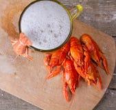 Tazza di birra e del gambero bollito Fotografia Stock
